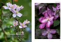 Gardens illustrated Special Edition 2017