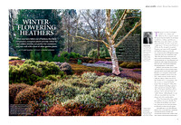 Gardens illustrated November 2016