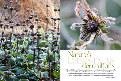 Country Living January 2014